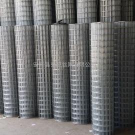 电焊网*圈玉米电焊网*深圳龙华热镀锌全自动焊接圈玉米网厂家