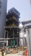 石油石化SCR脱硝装置