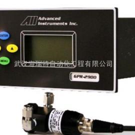 AII微量氧气分析仪GPR-1900