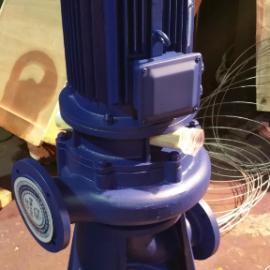 直立式管道排污泵65LW35-60-15
