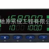 南京驰原CYP600称重定量配料仪表称重控制显示仪