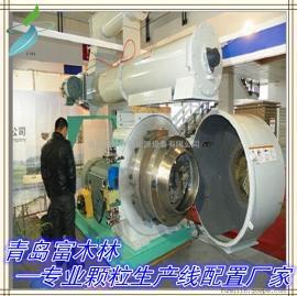 专业配置生物质颗粒燃料生产线 青岛时产一吨半吨木屑颗粒机