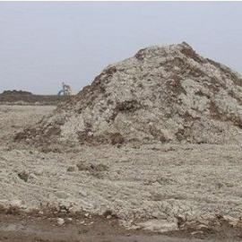 污泥干式臭气治理 植物液除臭 生物除臭塔 废气治理工程 环保公司