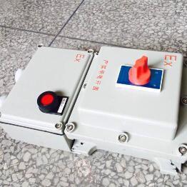 BLK52-63/3PXX防爆正泰断路器