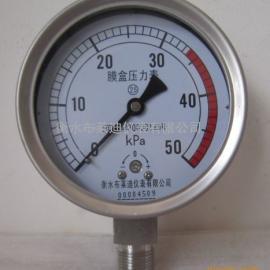 不锈钢膜盒压力表膜盒压力表铜材质 衡水布莱迪直接供应
