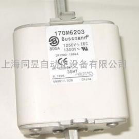 BUSSMAA熔断器 170M6203