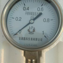0-1000paYE-100白口铁膜盒压力表