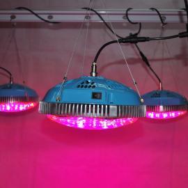 UFO 90W圆形LED植物生长灯 蔬菜补光灯