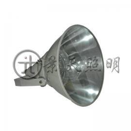 抗震高效投光灯GTZM9301-J1000