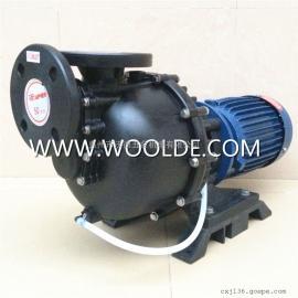 SD40022L同轴自吸式强酸碱化工泵 耐腐蚀泵台湾塑宝泵