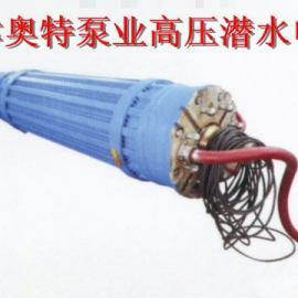 天津1142系列潜水电机 160-600kw大型潜水电机