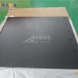 祺鑫 QX-AL-10050型 化成箔专用 钛阳极板