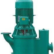 WLZ型无泄漏立式自吸泵