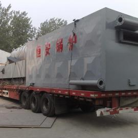 卧式燃煤导热油炉