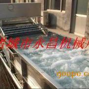 自动翻洗式蔬菜清洗机,多功能蔬菜清洗机