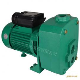 水井深吸程水泵 深水井吸水泵 JET 高吸程地下井抽水泵