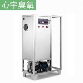 水处理消毒机 纯净水厂消毒消毒杀菌机 水消毒臭氧发生器