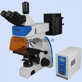 YG-200I 双目荧光显微镜  YG-200IS 三目