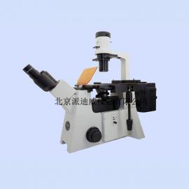 YG-50 荧光显微镜 细胞荧光染色观察