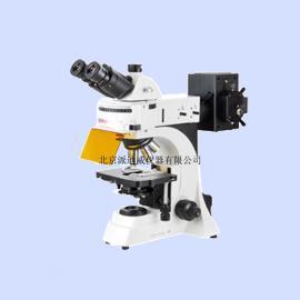 YG-41 荧光显微镜 细胞荧光染色观察
