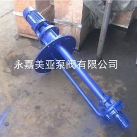 65FY-40A高温液下泵 化工液下泵 不锈钢液下泵