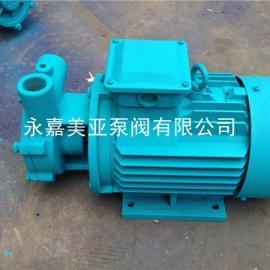 W型旋涡泵 不锈钢旋涡泵 高扬程漩涡离心泵 锅炉供水水泵