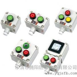 BLA53-2D防爆控制按钮