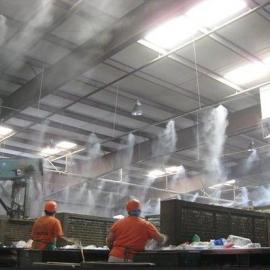 化工车间喷雾除臭 洗涤塔专业除臭液 植物除臭剂 公共卫生间除味