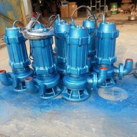 宣一牌QW修饰排污泵 厂家直销QW修饰污插秧机 白口铁修饰泵