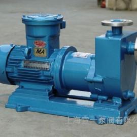 宣一ZCQ自吸式磁力泵 不锈钢自吸式磁力泵厂家