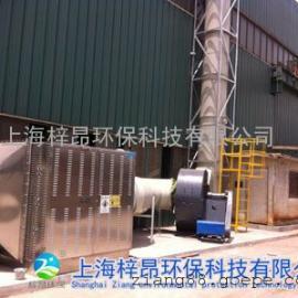 上海橡胶塑料造粒厂废气处理