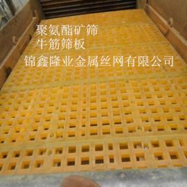 四川聚氨酯矿筛 胶质矿筛板 牛筋筛板