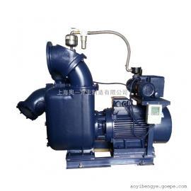 SZX12.1000.25强自吸排污泵