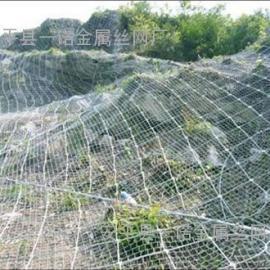 8边坡防护网DO/08/300钢丝绳护坡挂网柔性防护网厂家