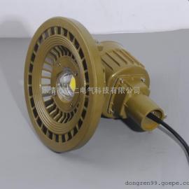 防爆高效节能LED道路灯(IIC)DR-320 高质量,价格优