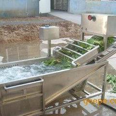 洗菜机 果蔬气泡清洗机 多功能蔬菜清洗线设备
