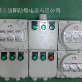 防爆照明动力控制箱