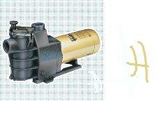 HAYWARD喜活水泵