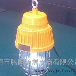 2.5米立杆式防爆灯