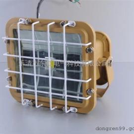 东仁:制造:防水防尘防腐泛光灯SBF6101-YQL50