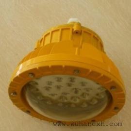 EPL01LED防爆平台灯