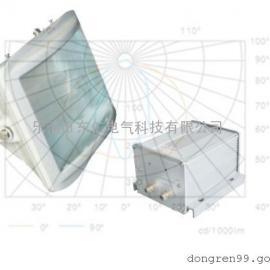 低碳节能无极灯NSC9720-W40,电磁感应灯,节能型