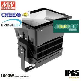 1000W LED泛光灯 大功率LED投射灯