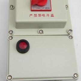 BSD-2100/100A防爆型负荷开关防爆断路器