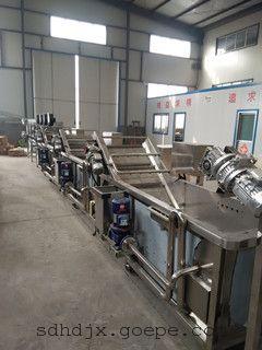 天翔专业水果清洗机 高效喷淋清洗设备 链板式多功能清洗机厂家