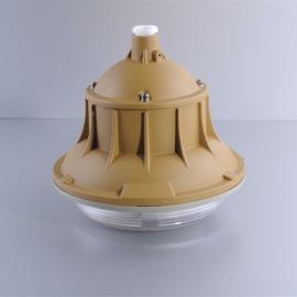 GCD801-W50防爆高效节能无极灯