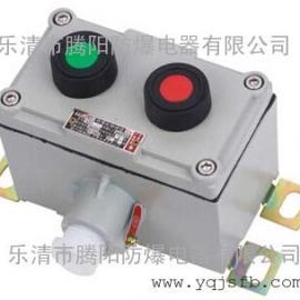 LA53-3D1B防爆按钮 带灯按钮 带表