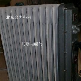 防爆油汀电暖气2000W《11片》