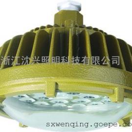 泉州防爆灯具主页照明LED化工厂专业照明 应急照明灯型号