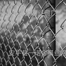 乡宁矿勾花菱形铁丝网 新式的钢丝六角网-山西护顶煤矿安全网